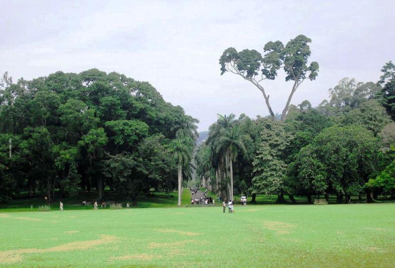 حديقة فكتوريا من افضل اماكن السياحة في نوراليا