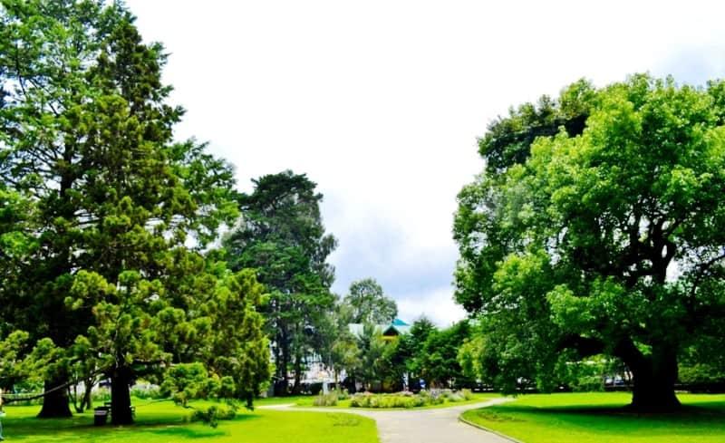 أهم 7 أنشطة في حديقة فكتوريا نوراليا سريلانكا رحلاتك