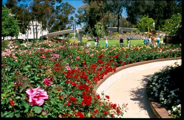 حديقة بالبوا سان دييغو