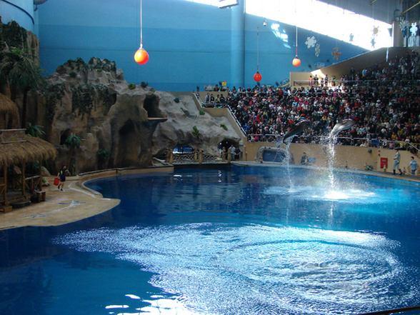 حديقة حيوانات بكين من افضل حدائق بكين السياحية