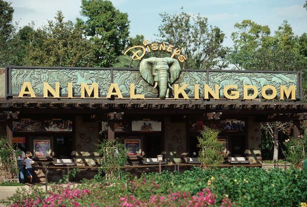 مملكة ديزني للحيوانات اورلاندو