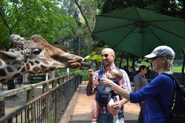 حديقة حيوانات كوانزو من اجمل اماكن السياحة في كوانزو الصين