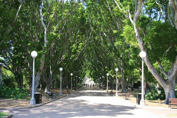 حديقة هايد بارك من اجمل حدائق سيدني استراليا