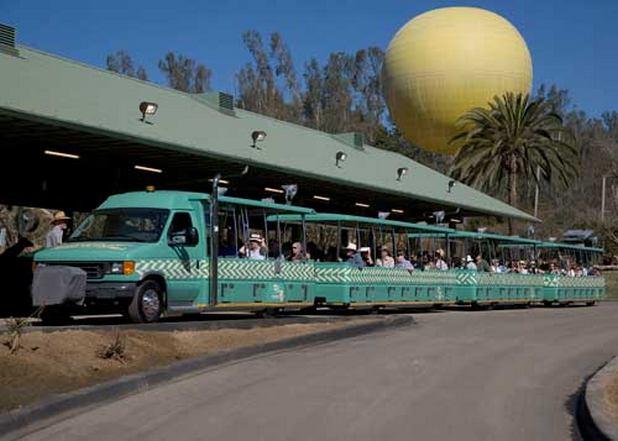تعتبر حديقة حيوانات سان دييغو سفاري بارك من اجمل اماكن السياحة في سان دييغو امريكا