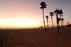 شاطئ فينيسيا لوس انجلوس
