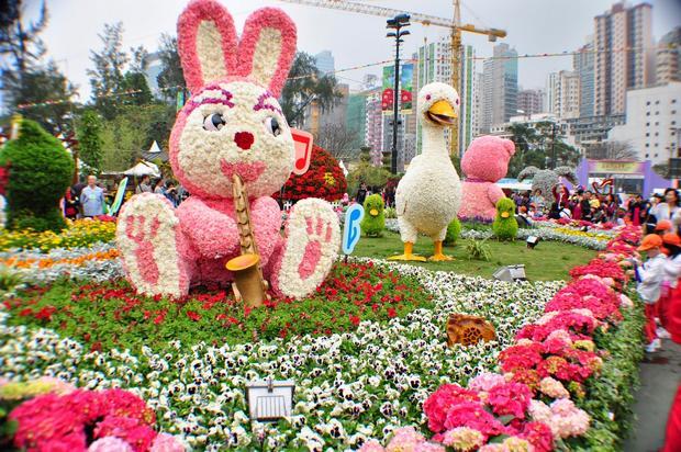 حديقة فيكتوريا من اجمل حدائق هونغ كونغ الصينية