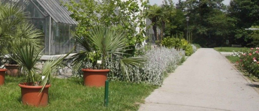 حدائق ليوبليانا النباتية من افضل اماكن السياحة في سلوفينيا