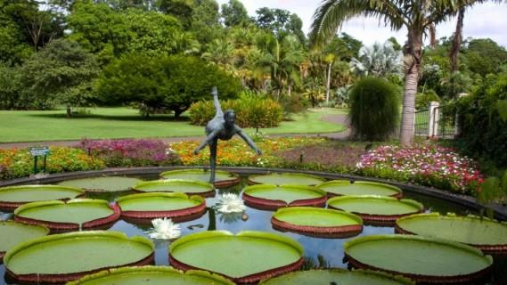 حديقة ساو باولو النباتية من اجمل الحدائق في مدينة ساو باولو السياحية
