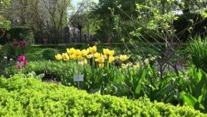 تعرف في المقال على افضل الانشطة السياحية في حديقة بوخارست النباتية ، بالإضافة الى افضل فنادق بوخارست القريبة منها