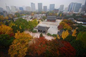 تعرف في المقال على افضل الانشطة السياحية في قصر تشانغدوك سيول ، بالإضافة الى افضل فنادق سيول القريبة منه
