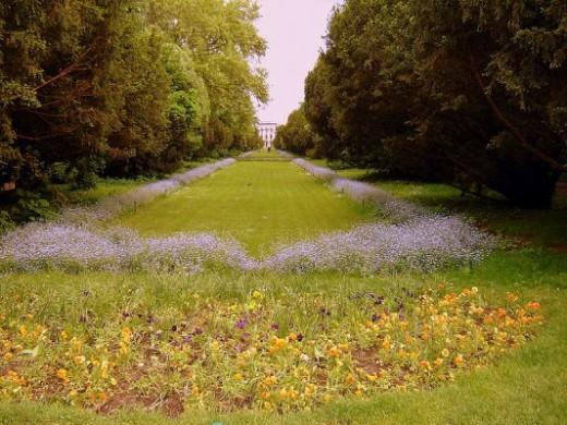 حديقة سيسميجيو بوخاريست