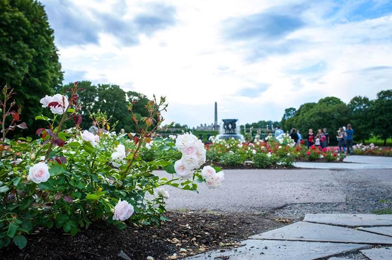 متنزه فروجنر من اجمل اماكن السياحة في أوسلو