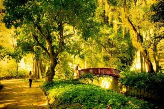 حديقة ريو دي جانيرو من اجمل اماكن السياحة في ريو دي جانيرو البرازيلية