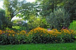 تعرف في المقال على افضل الانشطة السياحية في حديقة ليوبليانا النباتية ، بالإضافة الى افضل فنادق ليوبليانا القريبة منها