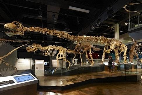 متحف ملبورن من افضل معالم ملبورن استراليا