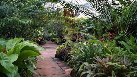 الحدائق النباتية الملكية من اجمل اماكن السياحة في ملبورن
