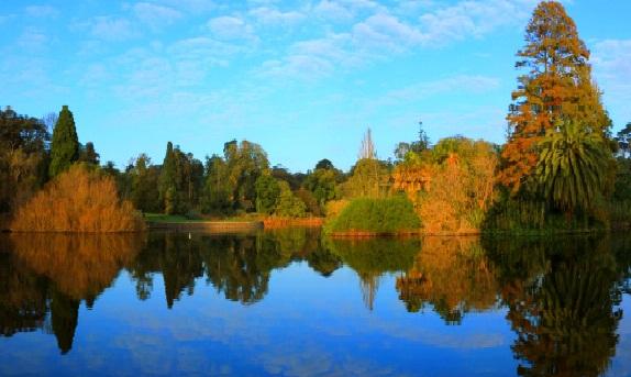 حدائق ملبورن النباتية الملكية