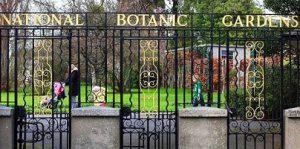 تعرف في المقال على افضل الانشطة السياحية في حديقة النباتات الوطنية في دبلن ايرلندا ، بالإضافة الى افضل دبلن القريبة منها