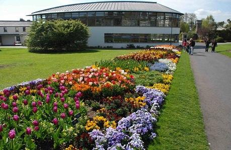 مطعم حدائق النباتات الوطنية في دبلن