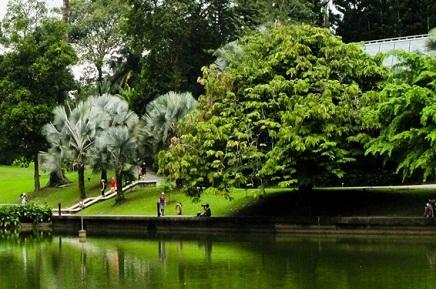 حدائق النباتات الوطنية من اجمل الاماكن في مدينة دبلن الايرلندية