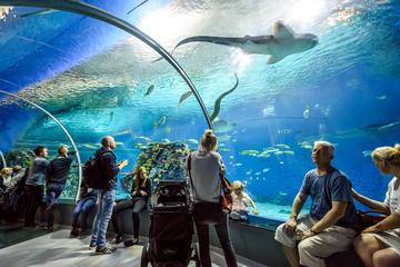 حوض الأسماك الوطني - الدنمارك