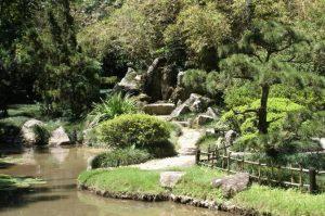 حديقة ريو دي جانيرو النباتية من اجمل حدائق مدينة ريو دي جانيرو