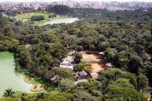 حديقة حيوانات ساو باولو