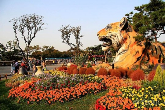 حديقة سول الكبيرة من اهم الاماكن السياحية في سيول كوريا الجنوبية