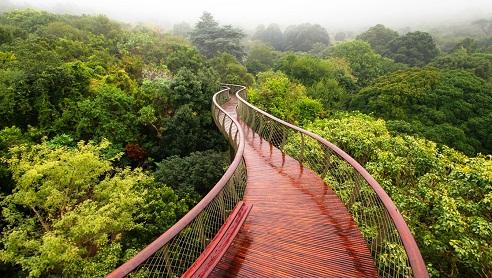 جسر متنزه جبل الطاولة الوطني من اهم الاماكن السياحية في كيب تاون