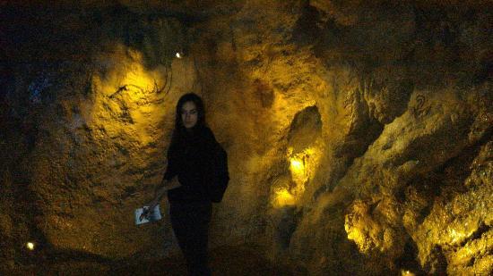 متحف التاريخ الطبيعي من افضل معالم مدينة بوخارست الرومانية