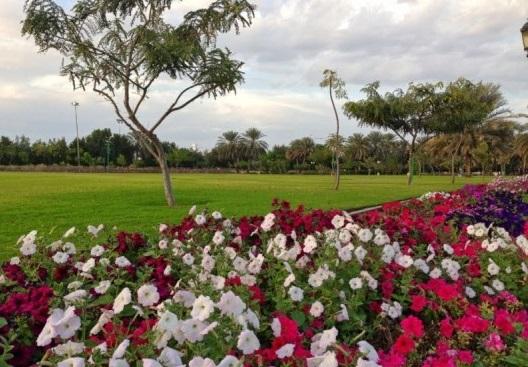 حديقة القرم الطبيعية من افضل الاماكن السياحية في مسقط