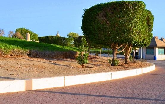 جولة في الجزيرة الخضراء في الكويت