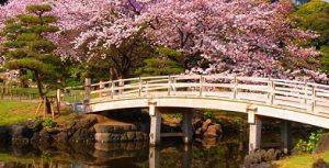 حدائق هاماريكيو في طوكيو اليابان