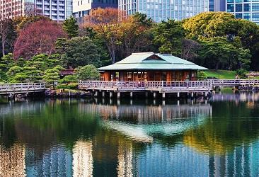 مقهى حدائق هاماريكيو في طوكيو