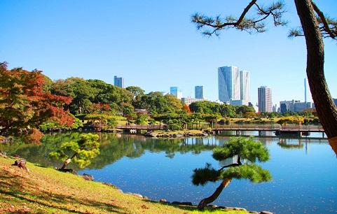مشهد لحدائق هاماريكيو في طوكيو
