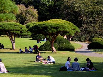 أماكن النزهات في حديقة شينجوكو جيوين في طوكيو