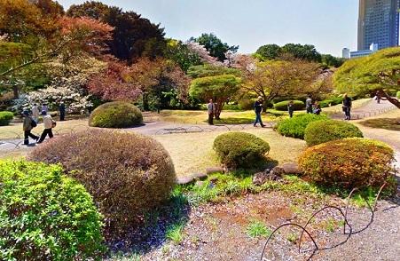 أماكن رياضة المشي في حديقة شينجوكو جيوين في طوكيو سياحة