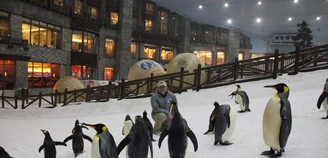 المدينة الثلجية في دبي