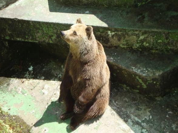 حديقة حيوانات زغرب من افضل حدائق زغرب