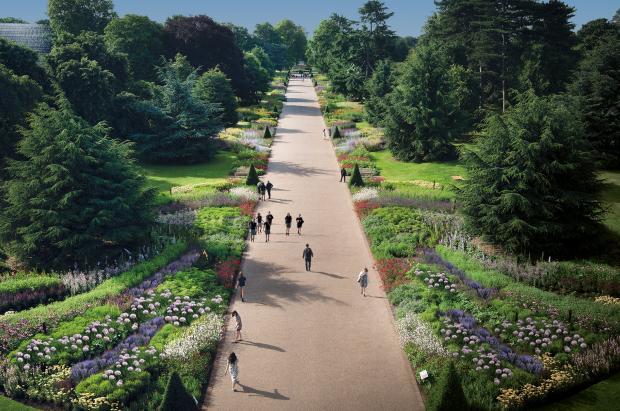 حدائق كية النباتية الملكية
