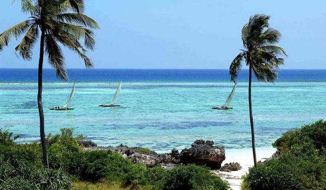 اماكن سياحية في تنزانيا جزيرة مافيا تنزانيا