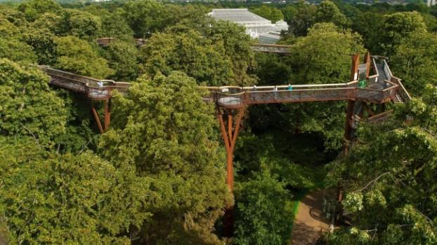 حدائق كيو النباتية الملكية