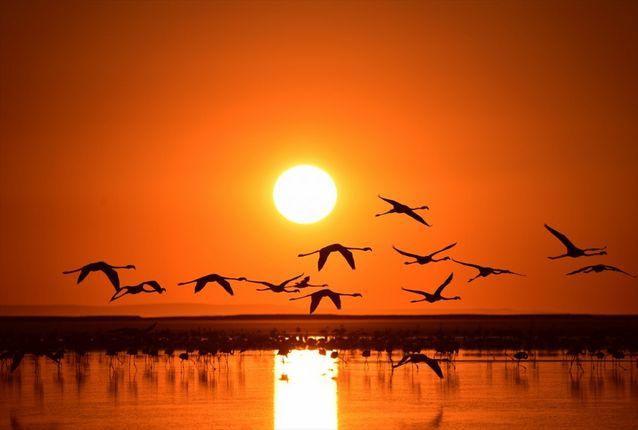 جنة الطيور من اجمل الاماكن السياحية في ازمير التركية