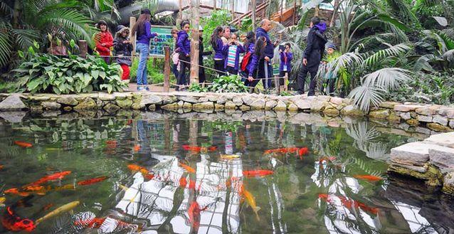 حديقة حيوانات ازمير من اهم الاماكن السياحية في ازمير تركيا