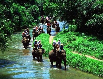 جولة الفيلة في ينابيع كرابي الساخنة في كرابي