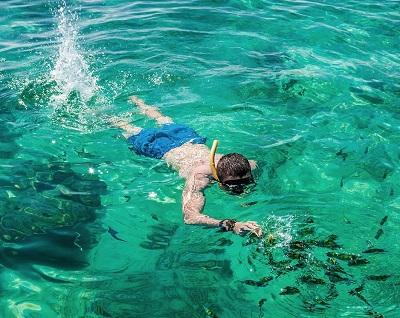 الغوص في شاطئ القرد في كرابي