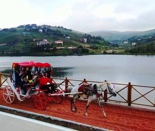 جولة في عربة الأحصنة في مرتفعات بارشمبا في أوردو