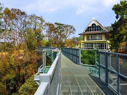 جسر أفضل 7 أنشطة في حديقة الملكة سيريكيت النباتية في شنغماي تايلاند