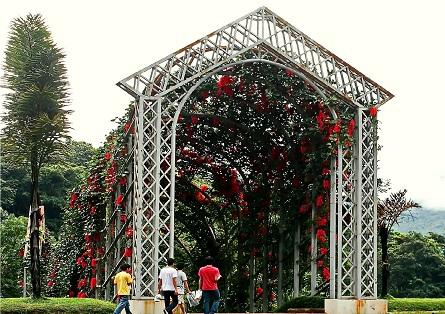 نفق الزهور الحمراء في أفضل 7 أنشطة في حديقة الملكة سيريكيت النباتية في شنغماي تايلاند