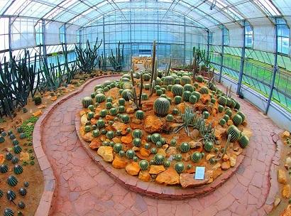 بيت النباتات الجافة الزجاجي في أفضل 7 أنشطة في حديقة الملكة سيريكيت النباتية في شنغماي تايلاند